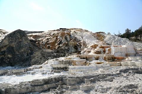 软性石灰岩