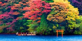 箱根两日游