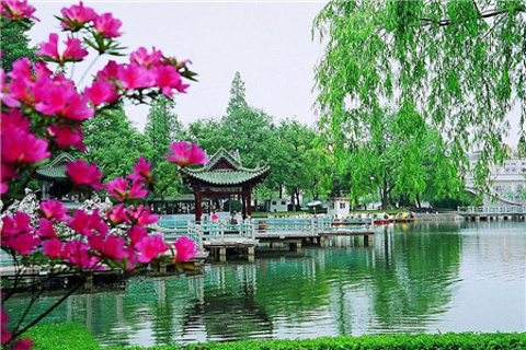 镜湖公园的图片