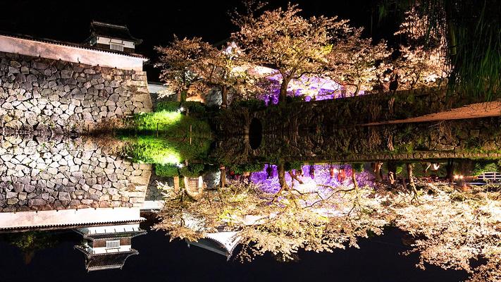 舞鹤公园旅游图片