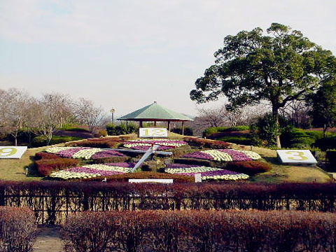 城北公园旅游景点图片