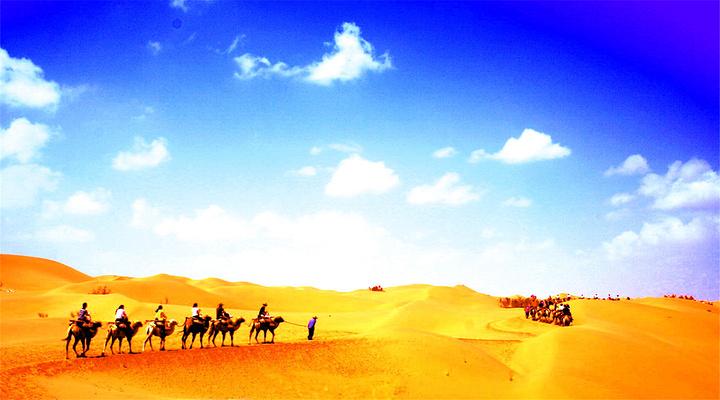 沙坡头旅游图片