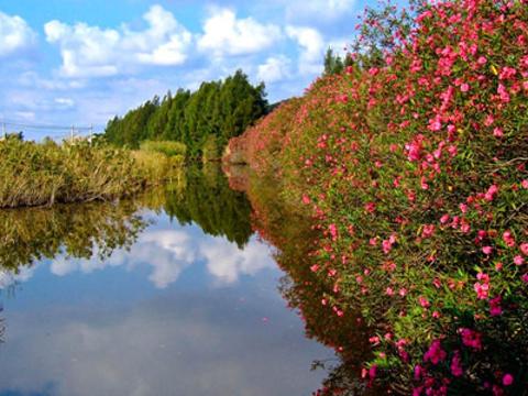 秀山岛旅游景点图片