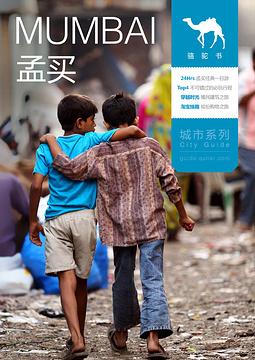 孟买骆驼书