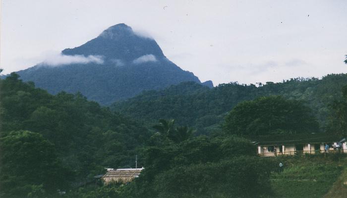 百花岭风景区旅游图片