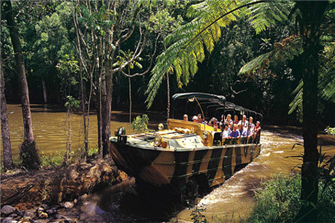 热带雨林公园
