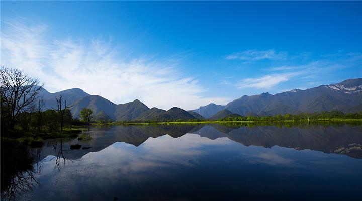 大九湖旅游图片