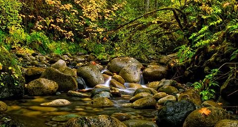 道格拉斯——阿普斯莱国家公园
