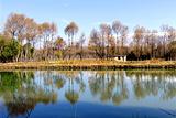 延庆三里河湿地公园
