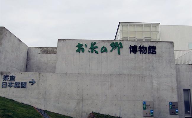 茶乡博物馆旅游图片