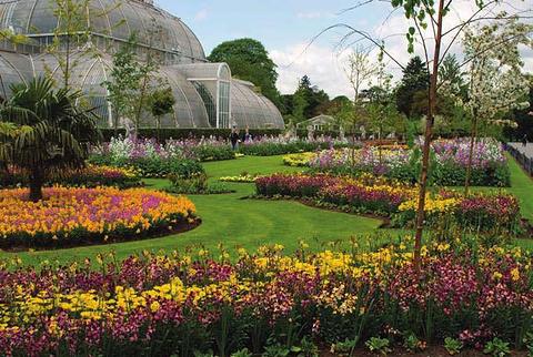 爱丁堡皇家植物园的图片