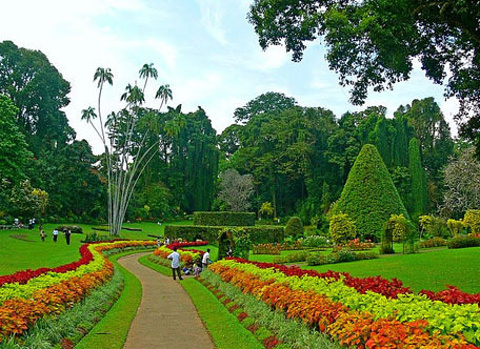 佩拉尼亚植物园