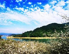 【四五月,踏青去】从化三天两夜温泉自驾小旅行