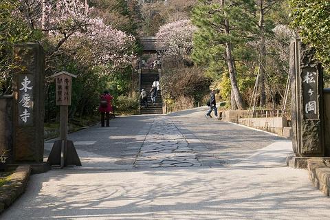 东庆寺的图片