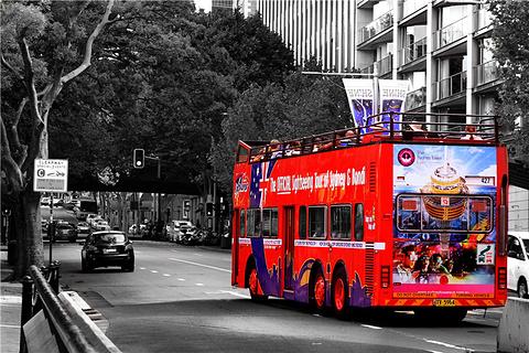 悉尼城市汽车团队游