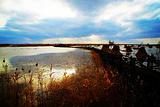 西沙湿地公园