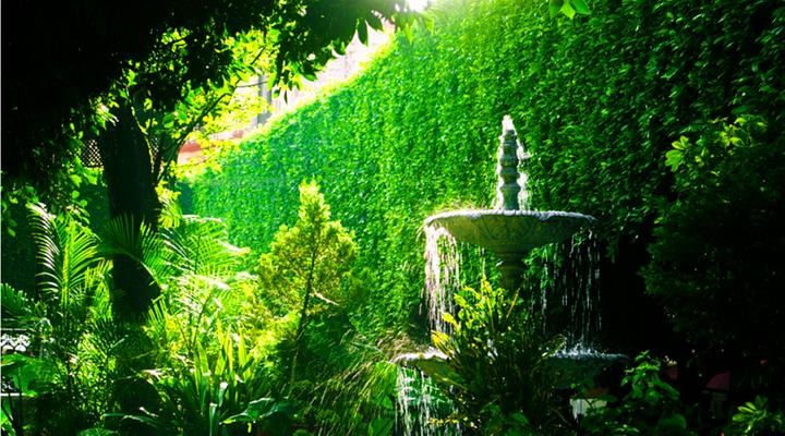 联盟花园旅游图片