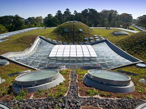 自然科学馆旅游景点图片