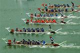 端午节观龙舟竞渡