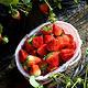 娟子草莓园