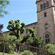 巴塞罗那公立大学