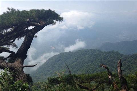 五指山旅游图片