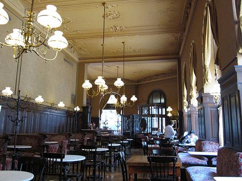 斯班咖啡馆旅游景点图片