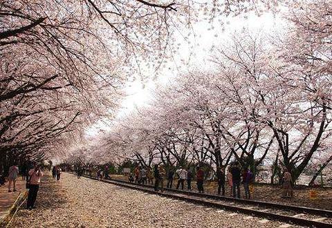 昌原市旅游图片