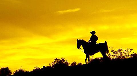 西部纵马游