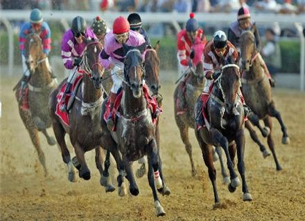 武汉国际赛马节