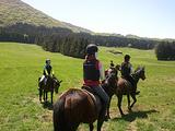 济州骑马公园