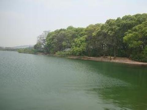 神仙湖旅游景点图片