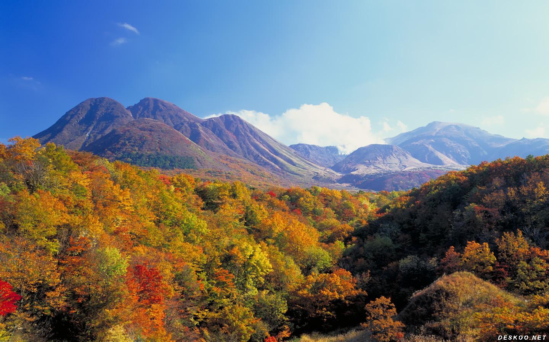 箱根全体验两日游