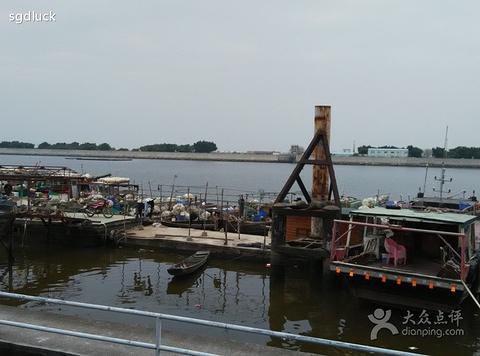 十九涌水产品交易码头