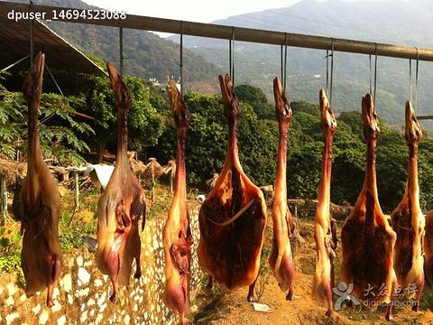 荔坪阁农庄旅游景点图片