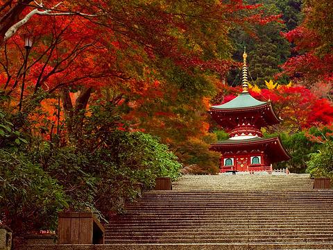 胜尾寺旅游景点图片