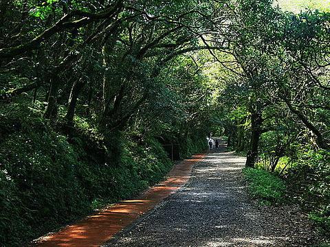 二子坪步道旅游景点图片