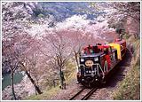 小火车观光游览