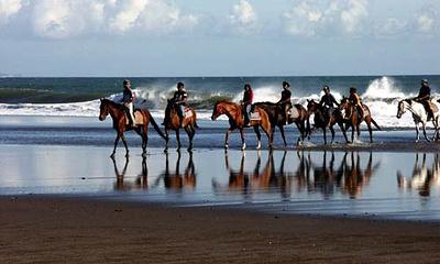 Tarukan Equestrian Centre