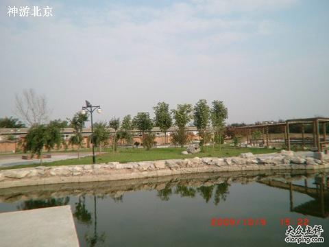 私密温泉小院旅游景点图片