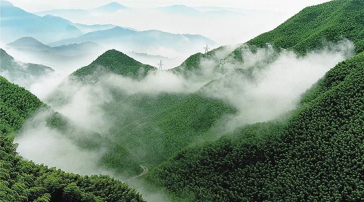 中国大竹海旅游图片