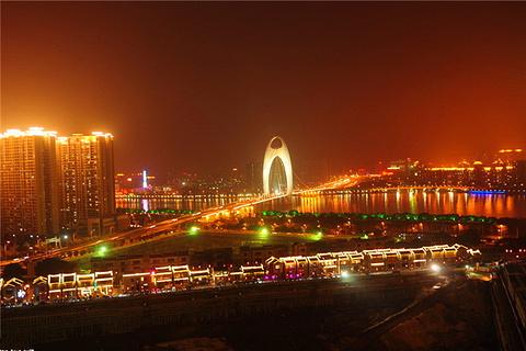珠江夜游广州塔码头的图片