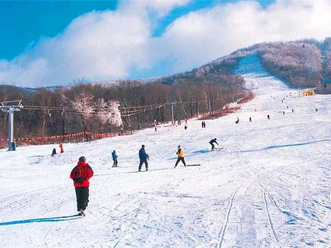塞罕坝滑雪场旅游景点图片