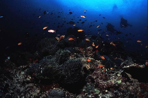 Noonu环礁旅游景点攻略图