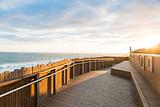 洛根海滩赏鲸平台