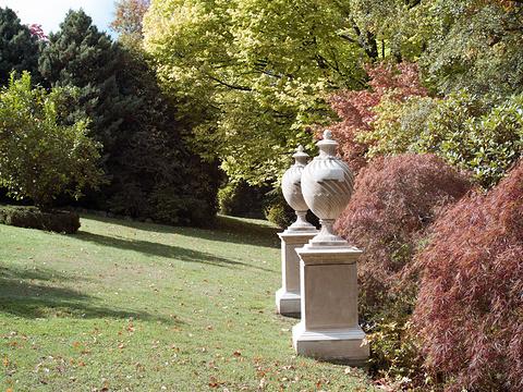 Forest Glade Garden旅游景点图片