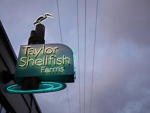 Taylor's Shellfish Farm旅游景点图片