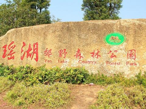 瑶湖郊野森林公园旅游景点图片