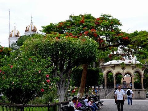 伊达尔戈花园旅游景点图片