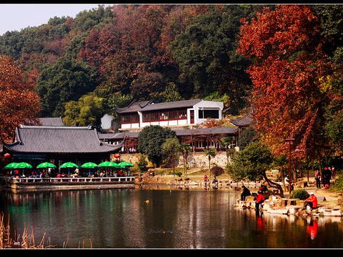 团城山公园旅游景点图片
